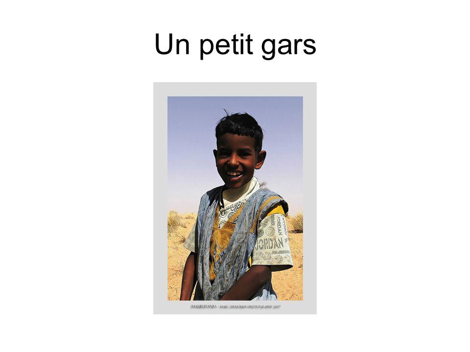 Une pirogue sur le Sénégal