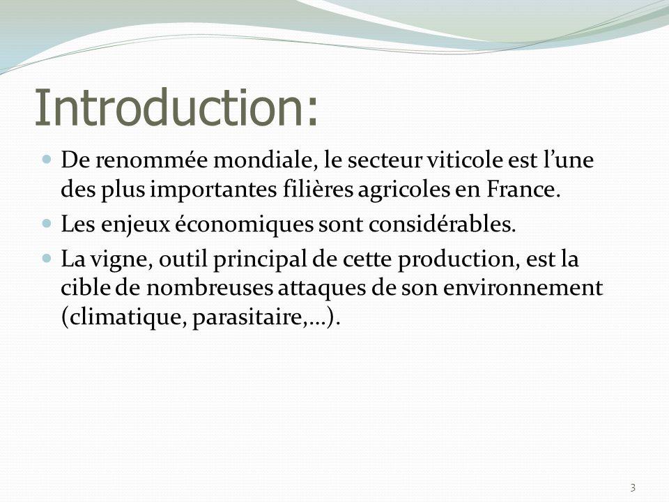 IV: Cycle biologique 14