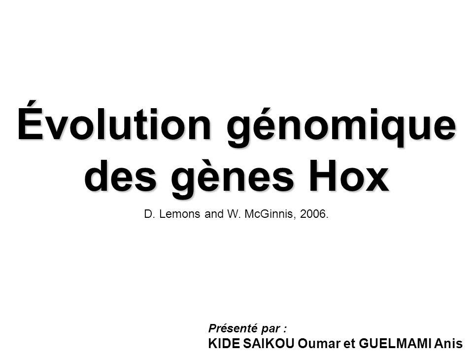 Évolution génomique des gènes Hox Présenté par : KIDE SAIKOU Oumar et GUELMAMI Anis D. Lemons and W. McGinnis, 2006.