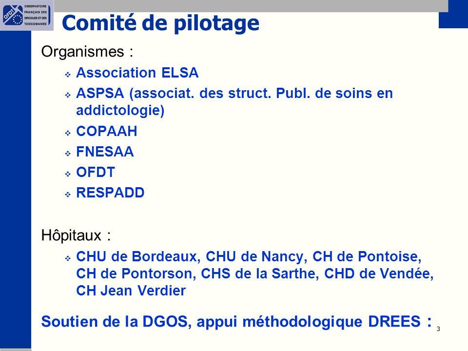 3 3 Comité de pilotage Organismes :  Association ELSA  ASPSA (associat. des struct. Publ. de soins en addictologie)  COPAAH  FNESAA  OFDT  RESPA