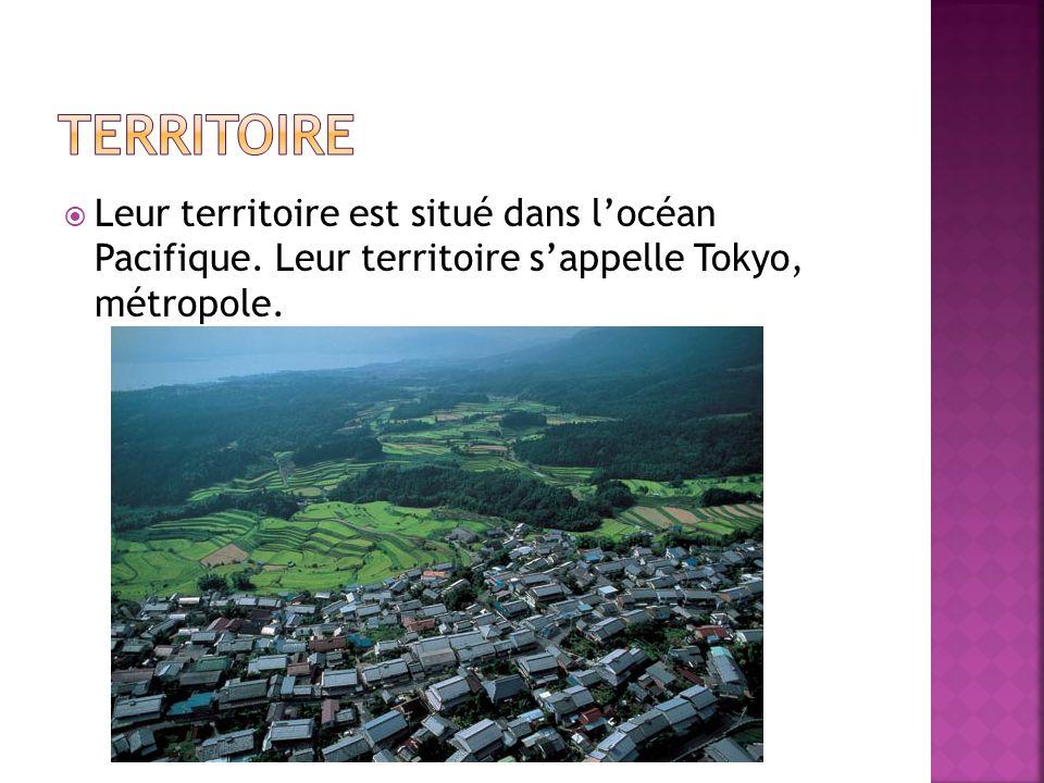  Leur territoire est situé dans l'océan Pacifique. Leur territoire s'appelle Tokyo, métropole.