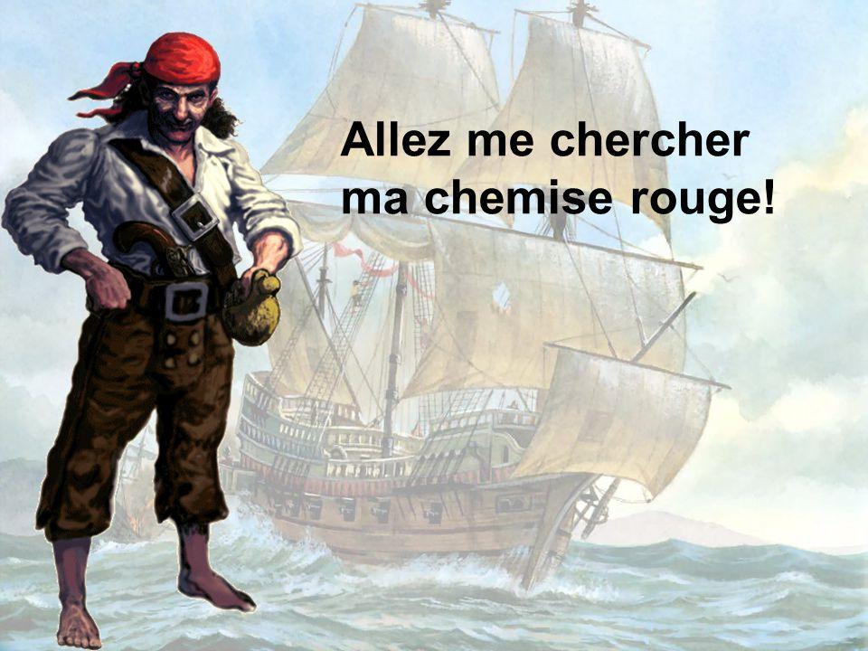 Il y a longtemps vivait un pirate nommé Capitaine SPAROSA. C'était un homme, un vrai de vrai, un dur, un tatoué au fer rouge qui ne montrait aucune pe