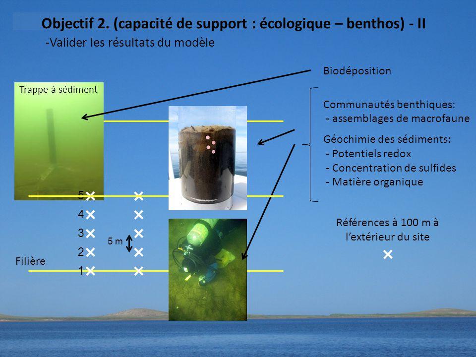 5 m 5432154321 Biodéposition Communautés benthiques: - assemblages de macrofaune Géochimie des sédiments: - Potentiels redox - Concentration de sulfides - Matière organique Références à 100 m à l'extérieur du site Trappe à sédiment Filière -Valider les résultats du modèle Objectif 2.