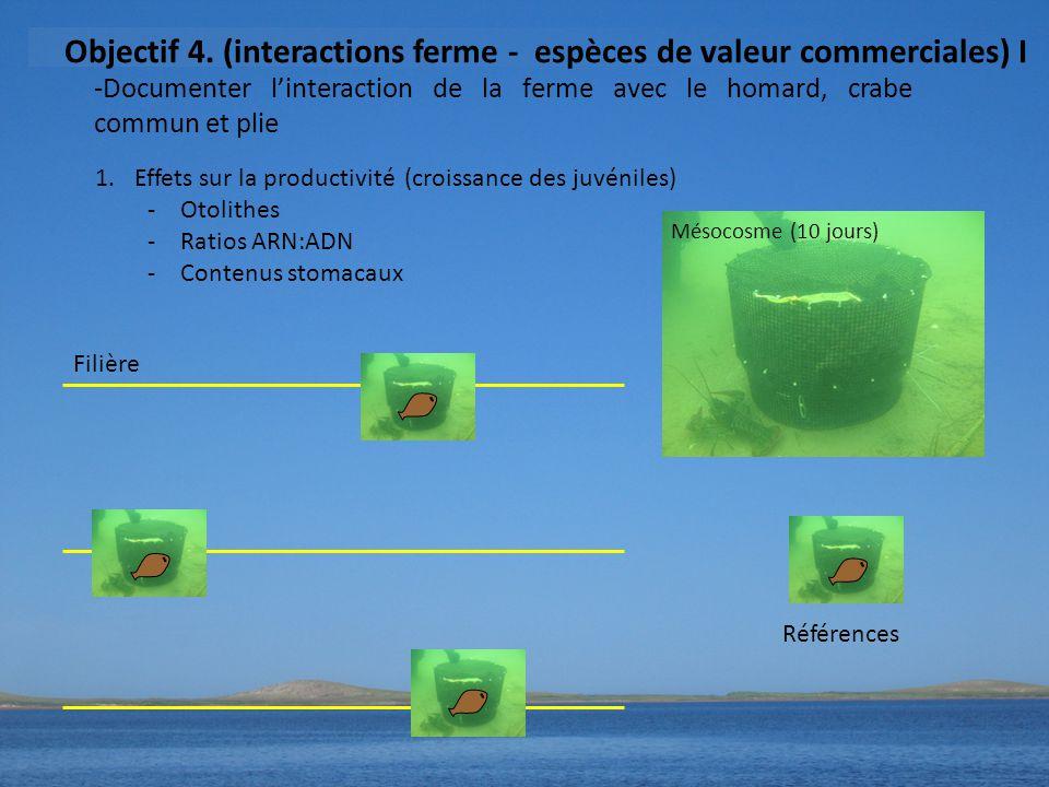 -Documenter l'interaction de la ferme avec le homard, crabe commun et plie Objectif 4.