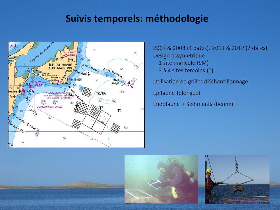 SM T2 T1 T3/SV T3 T4 2007 & 2008 (4 dates), 2011 & 2012 (2 dates): Design assymétrique 1 site maricole (SM) 3 à 4 sites témoins (T) Utilisation de grilles d'échantillonnage Épifaune (plongée) Endofaune + Sédiments (benne) Suivis temporels: méthodologie