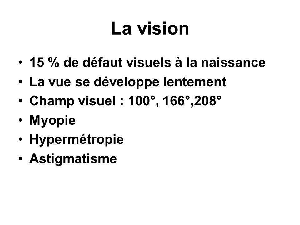 La vision •15 % de défaut visuels à la naissance •La vue se développe lentement •Champ visuel : 100°, 166°,208° •Myopie •Hypermétropie •Astigmatisme