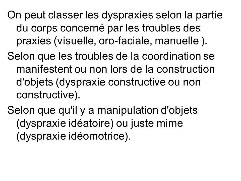On peut classer les dyspraxies selon la partie du corps concerné par les troubles des praxies (visuelle, oro-faciale, manuelle ). Selon que les troubl