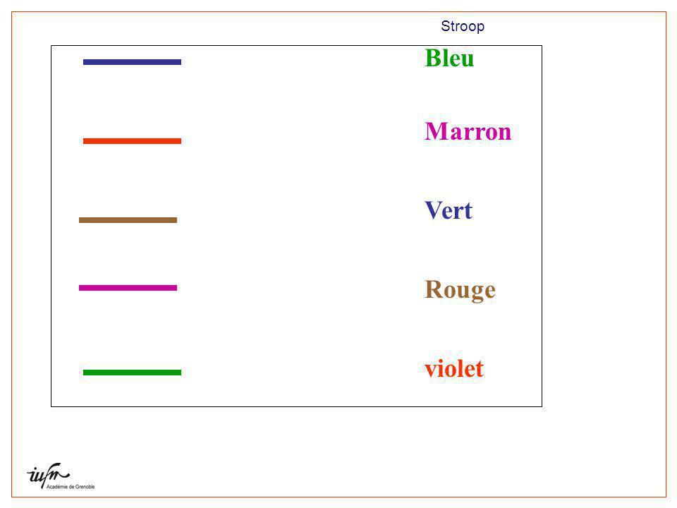 Bleu Marron Vert Rouge violet Laboratoire Cogni-Sciences Stroop