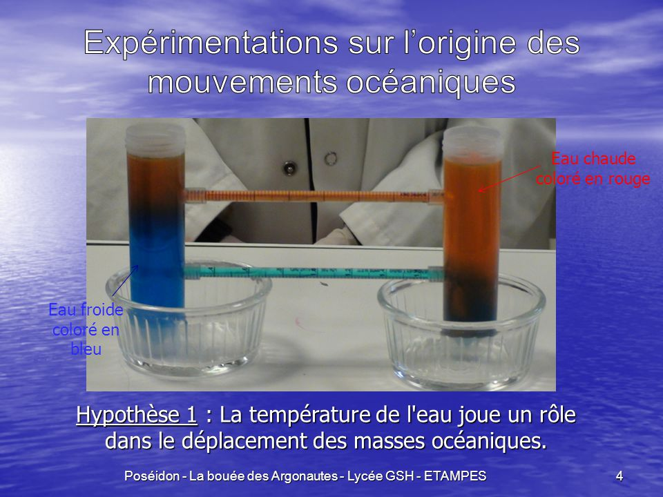 5 Hypothèse 2 : La salinité de l eau joue un rôle dans le déplacement des masses océaniques Poséidon - La bouée des Argonautes - Lycée GSH - ETAMPES Eau salée coloré en bleu Eau douce incolore