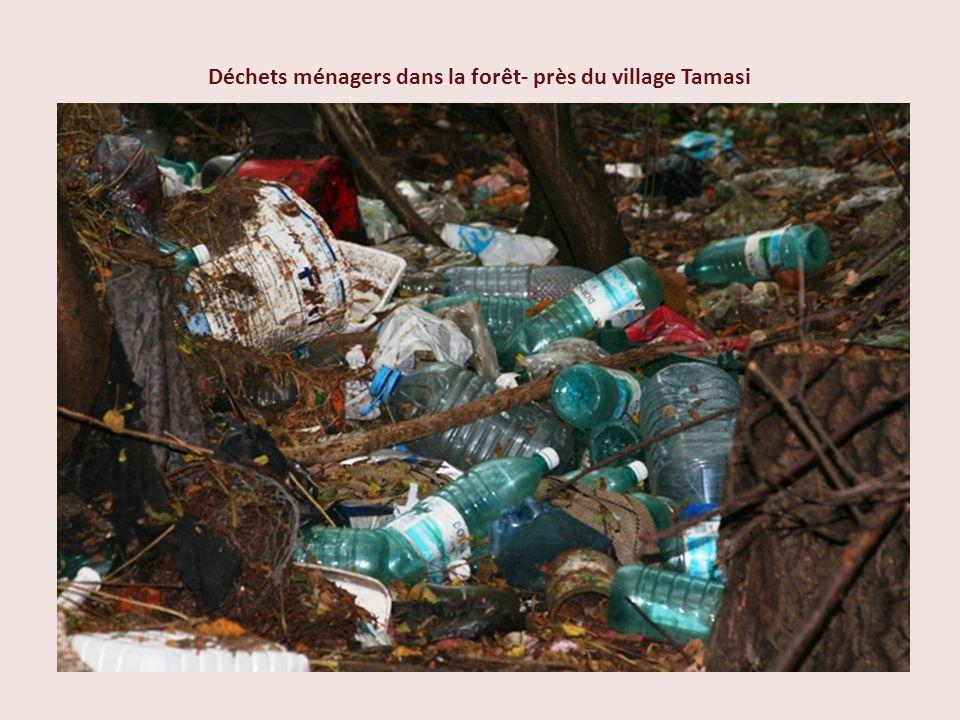 Déchets ménagers dans la forêt- près du village Tamasi