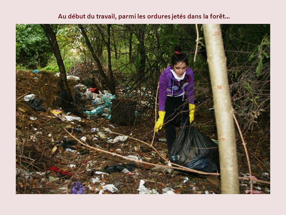 Au début du travail, parmi les ordures jetés dans la forêt…