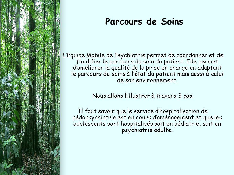 L'Equipe Mobile de Psychiatrie permet de coordonner et de fluidifier le parcours du soin du patient. Elle permet d'améliorer la qualité de la prise en