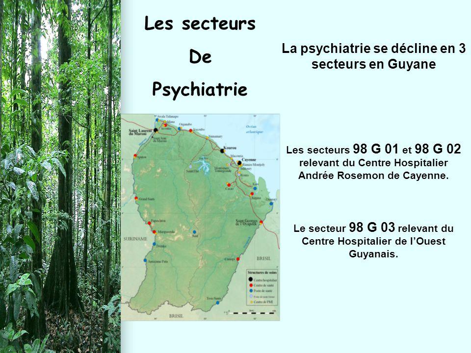 La psychiatrie se décline en 3 secteurs en Guyane Les secteurs 98 G 01 et 98 G 02 relevant du Centre Hospitalier Andrée Rosemon de Cayenne. Le secteur