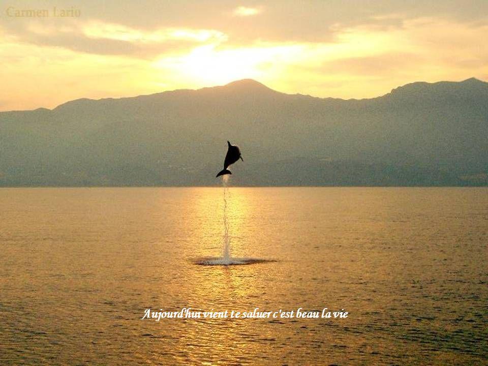 Un nouveau jour va se lever Hier n'est plus que du passé