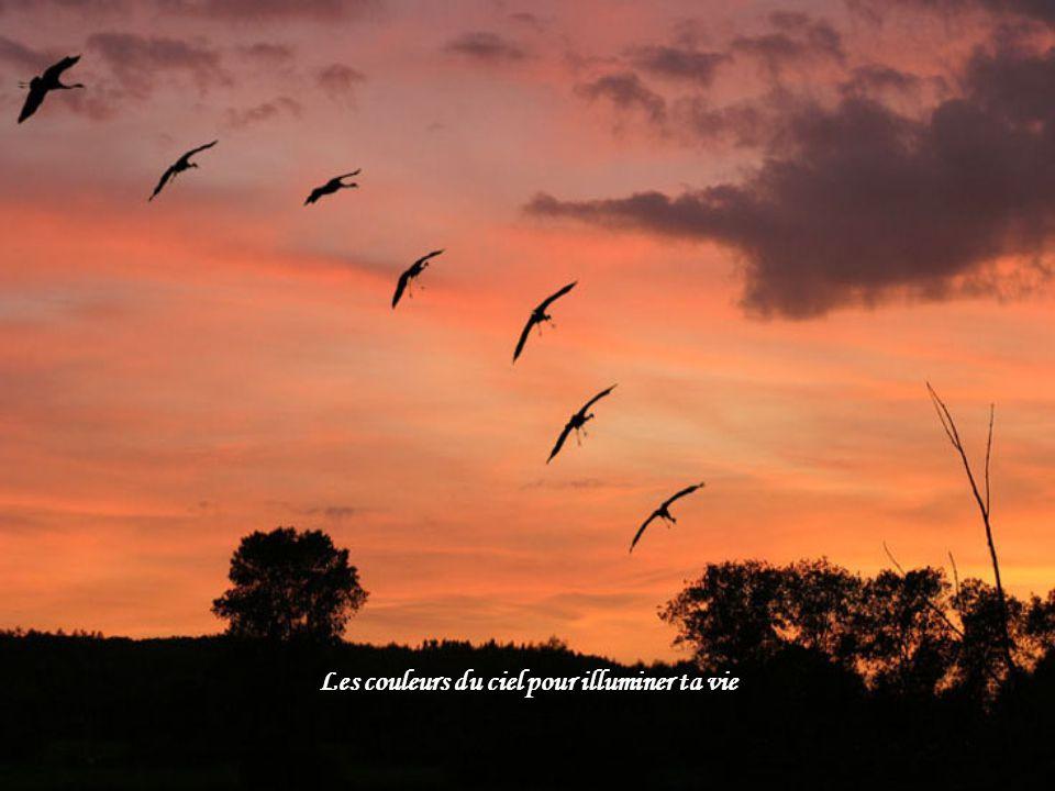 Les couleurs du ciel pour illuminer ta vie
