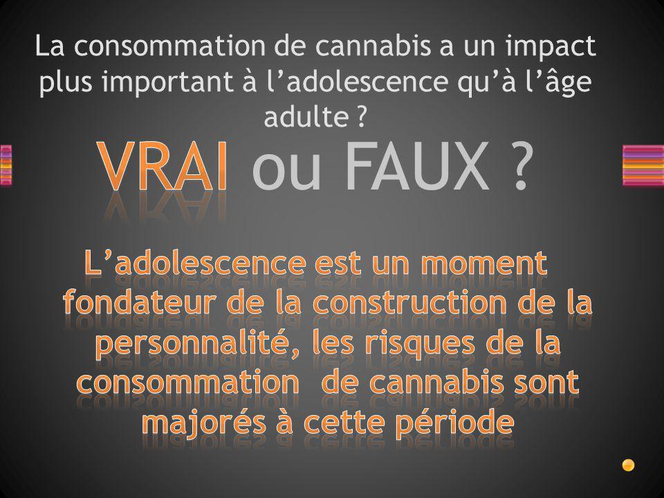 VRAI ou FAUX ? La consommation de cannabis a un impact plus important à l'adolescence qu'à l'âge adulte ?