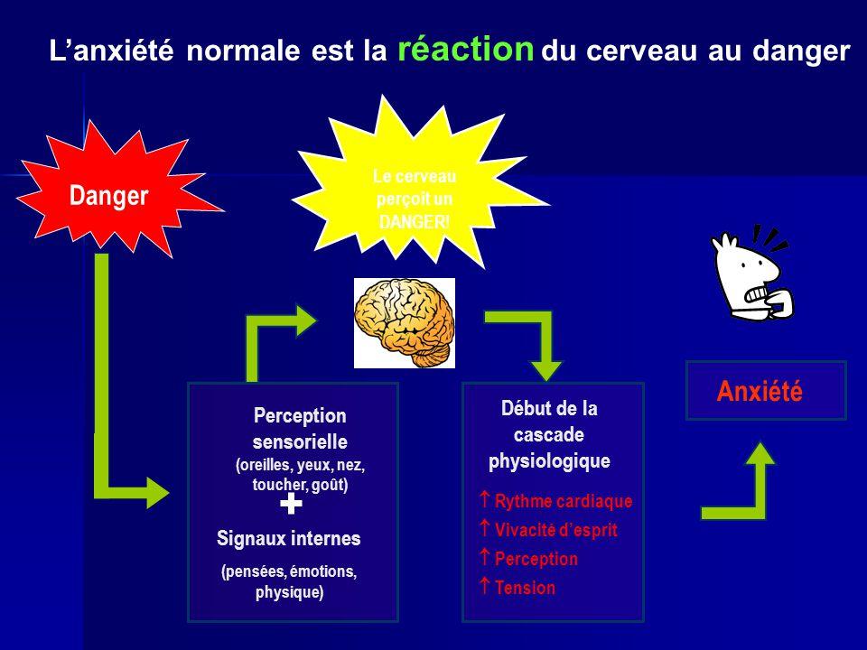 L'anxiété normale est la réaction du cerveau au danger Début de la cascade physiologique  Rythme cardiaque  Tension  Vivacité d'esprit  Perception