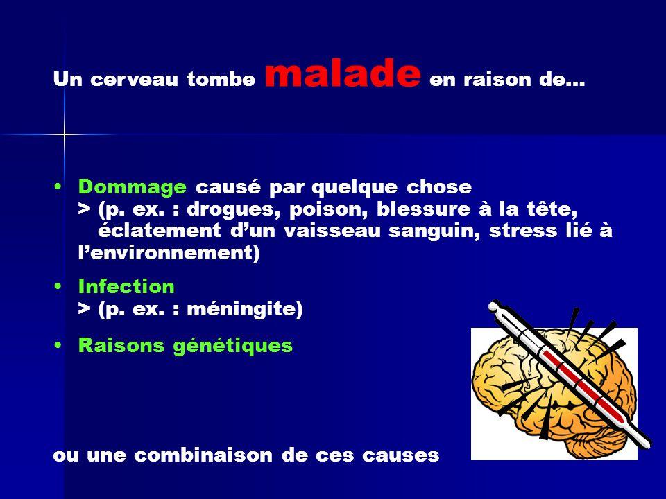 Un cerveau tombe malade en raison de… •Dommage causé par quelque chose > (p. ex. : drogues, poison, blessure à la tête, éclatement d'un vaisseau sangu