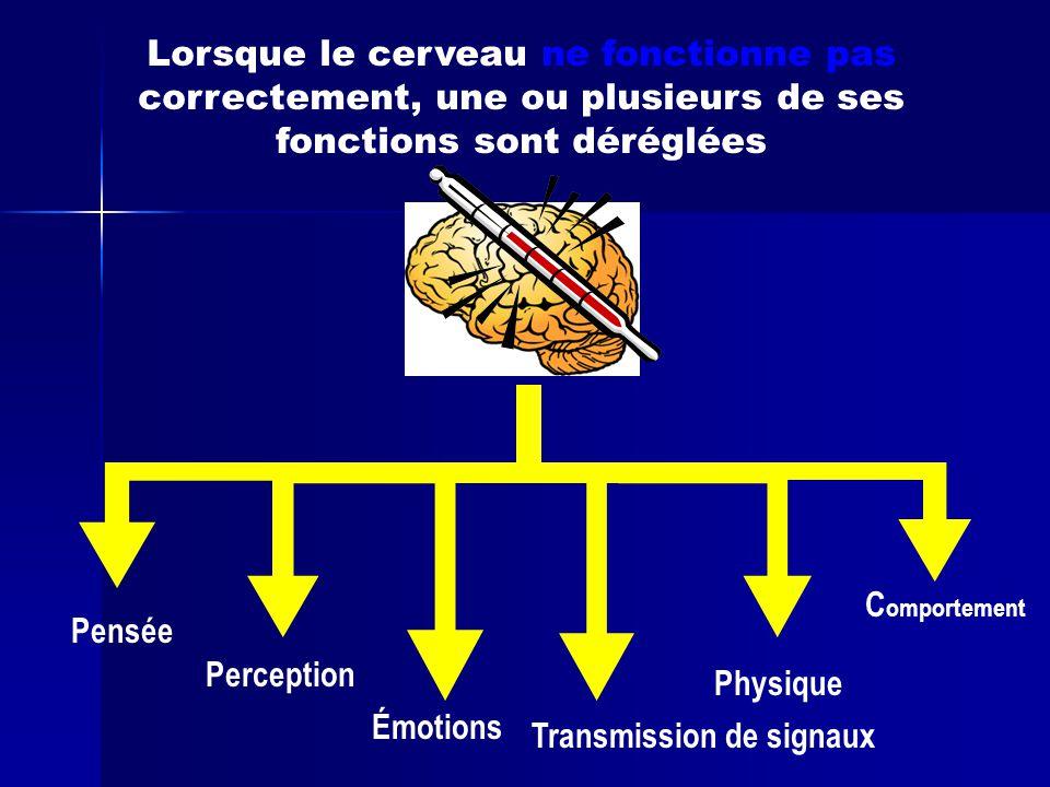 Pensée Lorsque le cerveau ne fonctionne pas correctement, une ou plusieurs de ses fonctions sont déréglées Perception Émotions Transmission de signaux