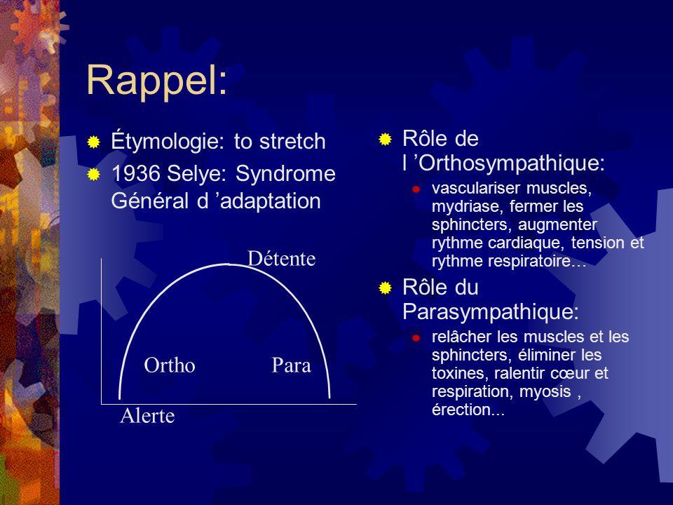 Rappel:  Étymologie: to stretch  1936 Selye: Syndrome Général d 'adaptation  Rôle de l 'Orthosympathique:  vasculariser muscles, mydriase, fermer
