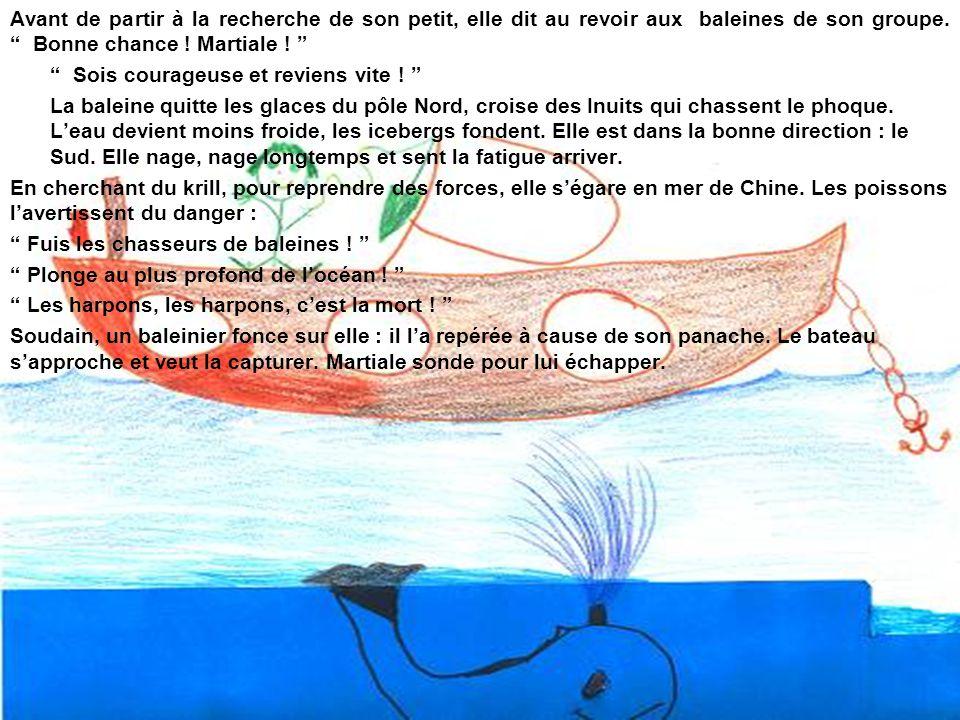 La baleine se dirige vers la grande barrière de corail.