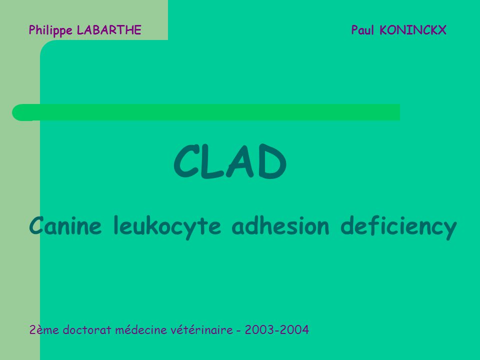 Philippe LABARTHE Paul KONINCKX CLAD Canine leukocyte adhesion deficiency 2ème doctorat médecine vétérinaire - 2003-2004