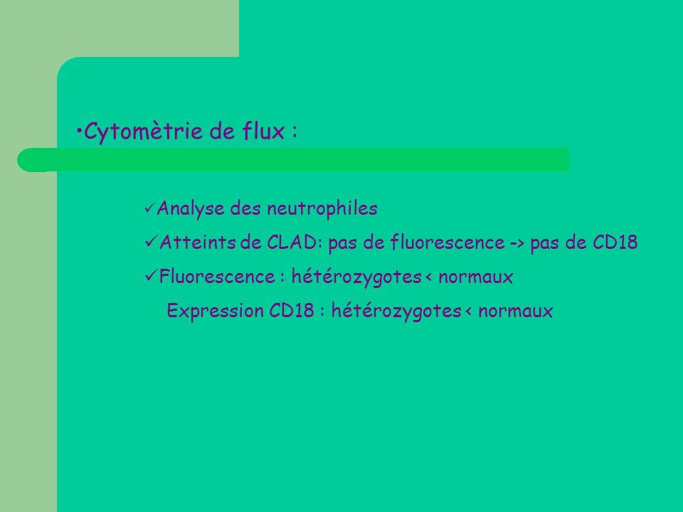 •Cytomètrie de flux :  Analyse des neutrophiles  Atteints de CLAD: pas de fluorescence -> pas de CD18  Fluorescence : hétérozygotes < normaux Expre