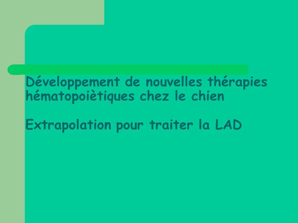 Développement de nouvelles thérapies hématopoiètiques chez le chien Extrapolation pour traiter la LAD