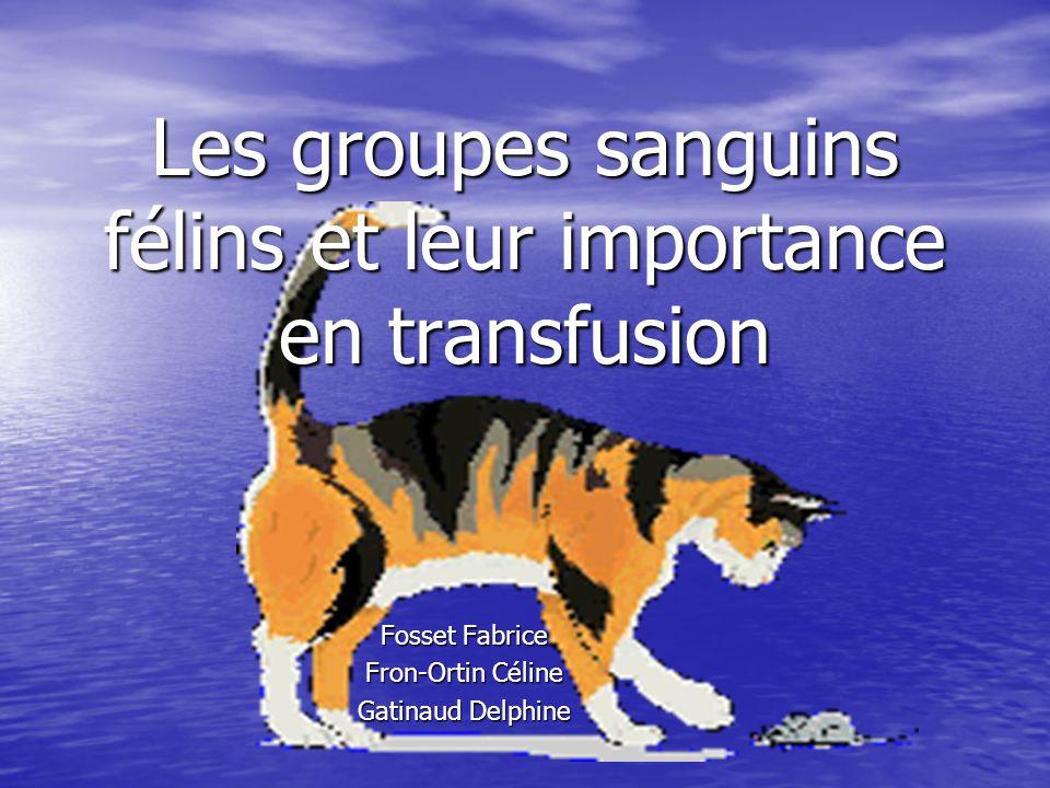 Les groupes sanguins félins et leur importance en transfusion Fosset Fabrice Fron-Ortin Céline Gatinaud Delphine