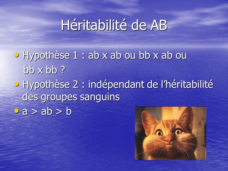 Héritabilité de AB • Hypothèse 1 : ab x ab ou bb x ab ou bb x bb .