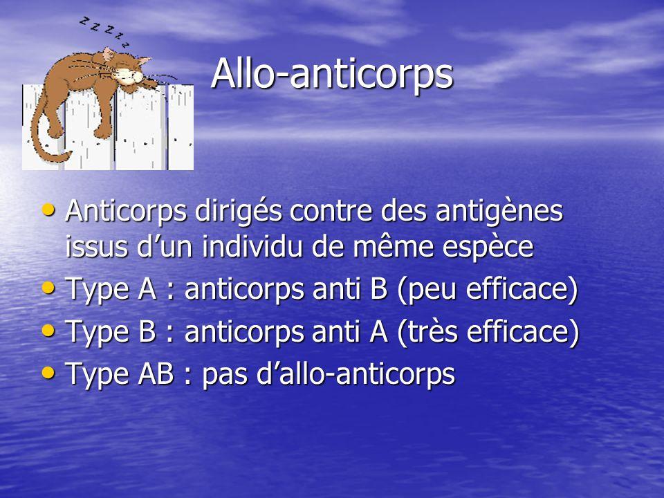 Allo-anticorps • Anticorps dirigés contre des antigènes issus d'un individu de même espèce • Type A : anticorps anti B (peu efficace) • Type B : anticorps anti A (très efficace) • Type AB : pas d'allo-anticorps
