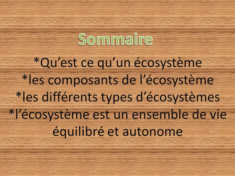 *Qu'est ce qu'un écosystème *les composants de l'écosystème *les différents types d'écosystèmes *l'écosystème est un ensemble de vie équilibré et auto