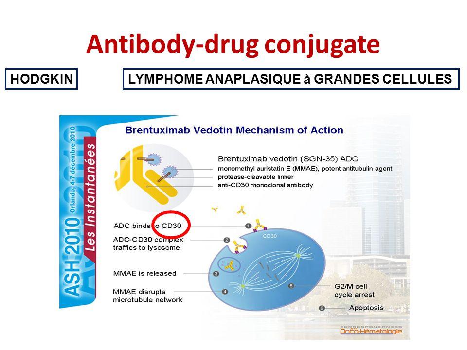Antibody-drug conjugate HODGKINLYMPHOME ANAPLASIQUE à GRANDES CELLULES