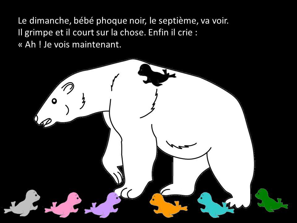 Le dimanche, bébé phoque noir, le septième, va voir.