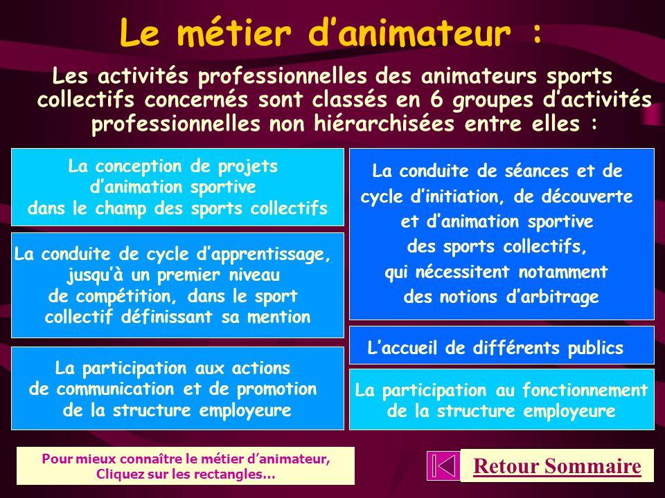 Brevet Professionnel de la Jeunesse, de l'Éducation Populaire et du Sport – « Spécialité activités sports collectifs » Qu'est-ce que le METIER D'ANIMATEUR .