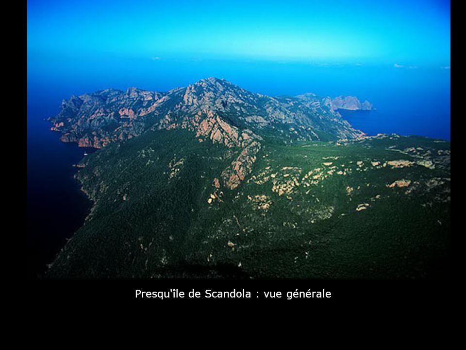 Grand sud de l'Ile : Capo Pertusado