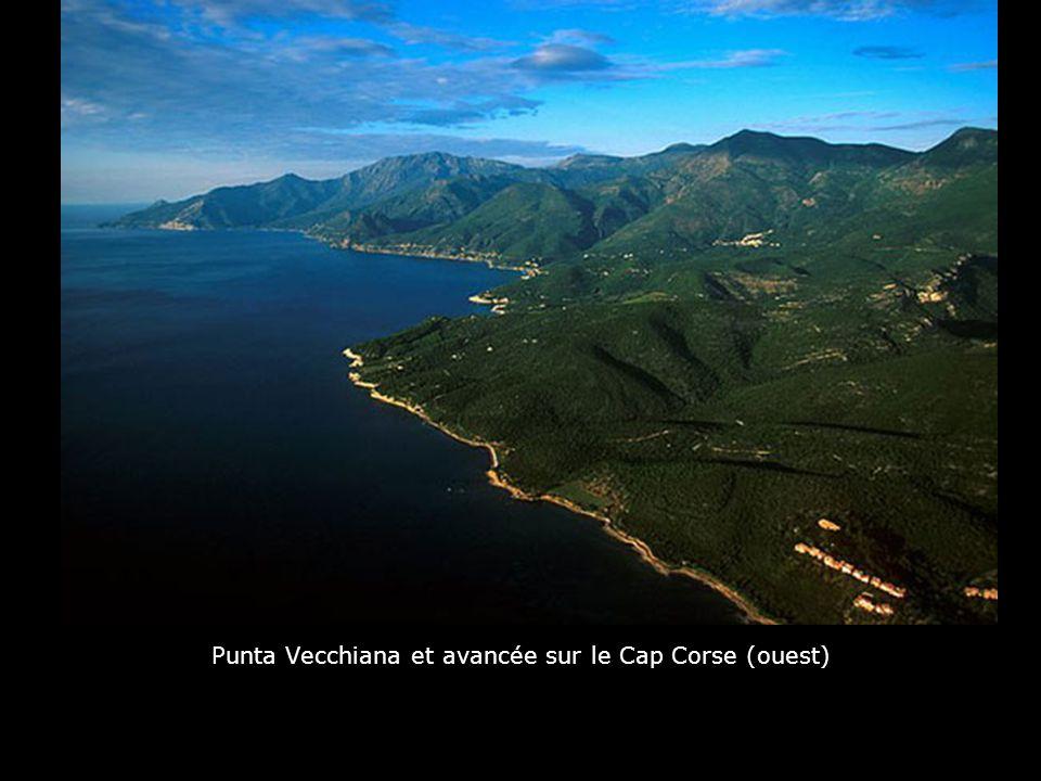 Iles Lavezzi : l'île de Cavallo