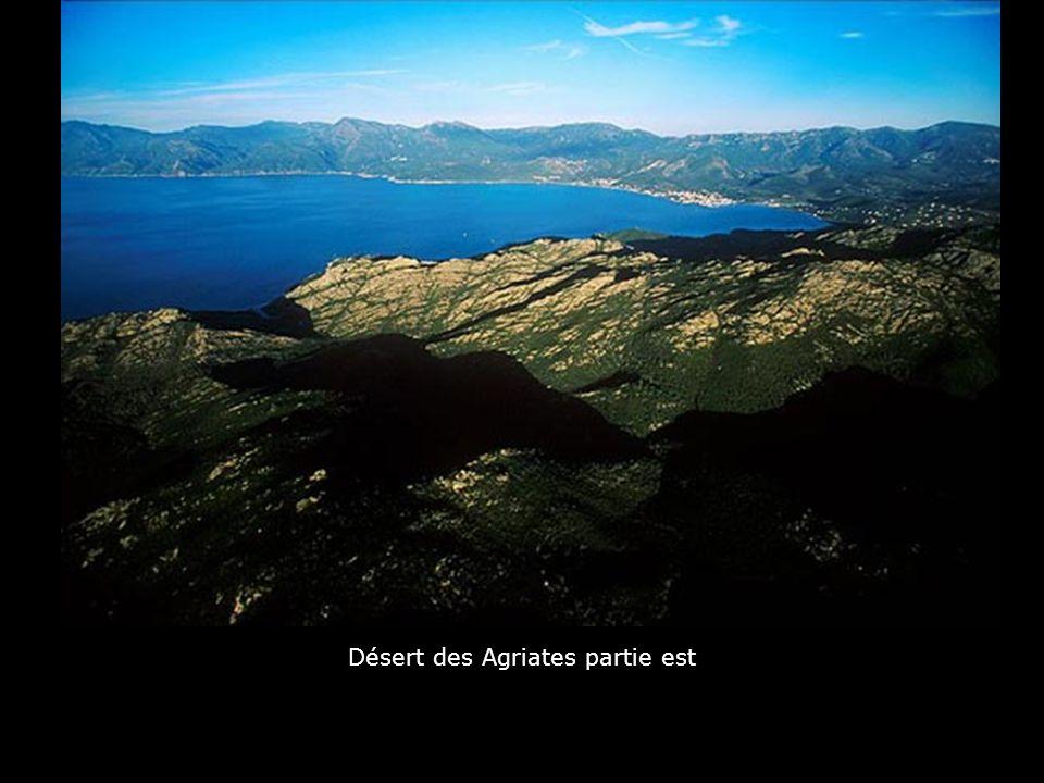 Cap sud de l'Ile : Golf de la Pointe de Sperono
