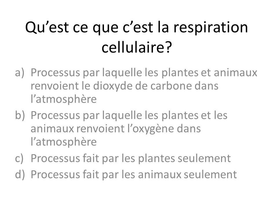 Qu'est ce que c'est la respiration cellulaire? a)Processus par laquelle les plantes et animaux renvoient le dioxyde de carbone dans l'atmosphère b)Pro