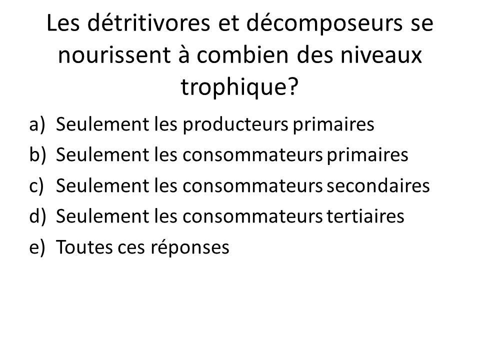Les détritivores et décomposeurs se nourissent à combien des niveaux trophique? a)Seulement les producteurs primaires b)Seulement les consommateurs pr