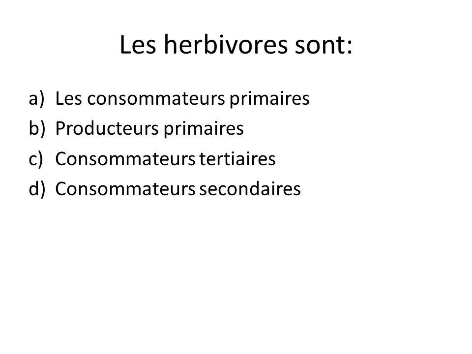 Les herbivores sont: a)Les consommateurs primaires b)Producteurs primaires c)Consommateurs tertiaires d)Consommateurs secondaires