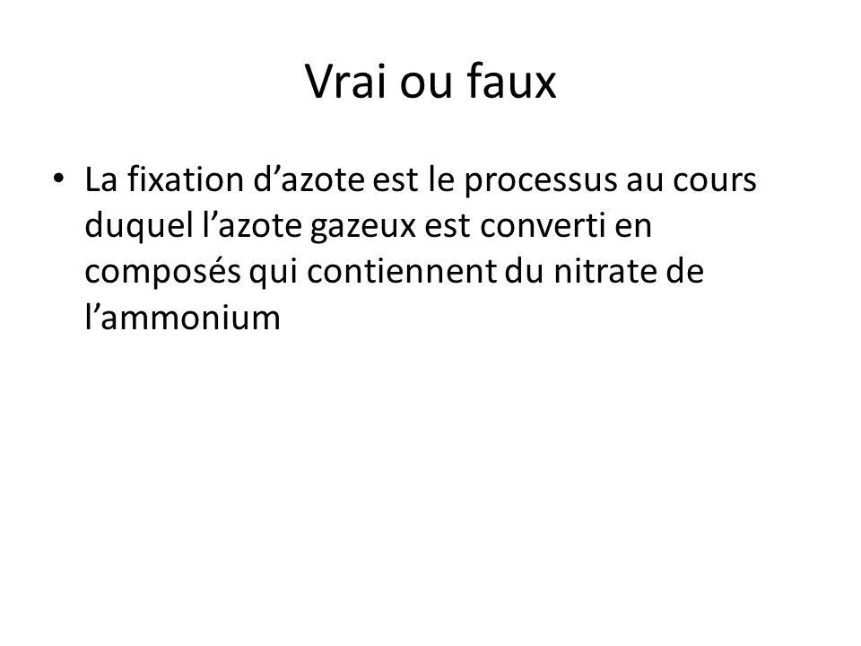 Vrai ou faux • La fixation d'azote est le processus au cours duquel l'azote gazeux est converti en composés qui contiennent du nitrate de l'ammonium