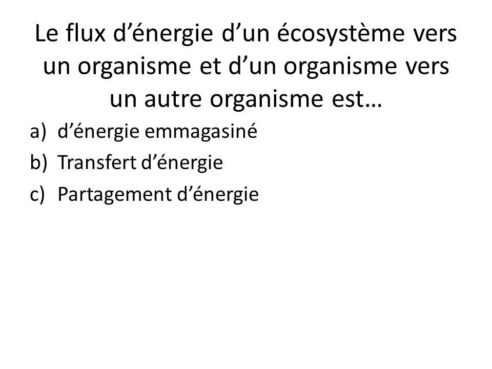 Le flux d'énergie d'un écosystème vers un organisme et d'un organisme vers un autre organisme est… a)d'énergie emmagasiné b)Transfert d'énergie c)Part