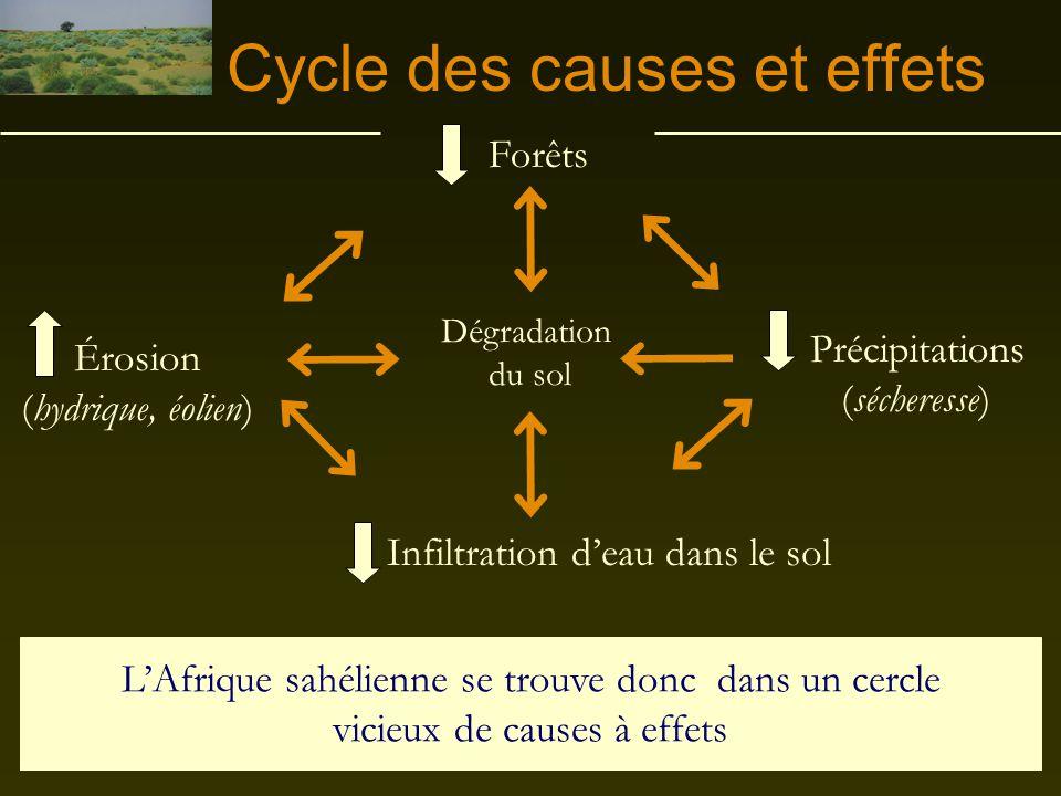 Les causes LES ACTIVITÉS HUMAINES La coupe excessive des arbres La surexploitation des terres Le surpâturage par le bétail LES EFFETS DU CLIMAT La séc