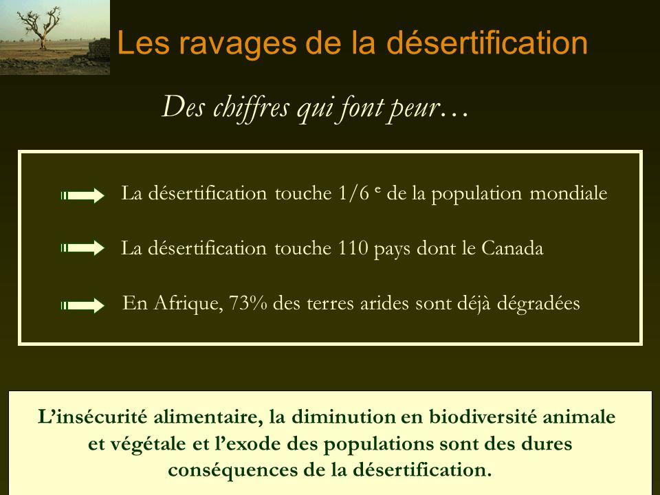 Les causes et effets de la désertification: une immense tragédie humaine La désertification À chaque jour, des millions de femmes et À chaque jour, de