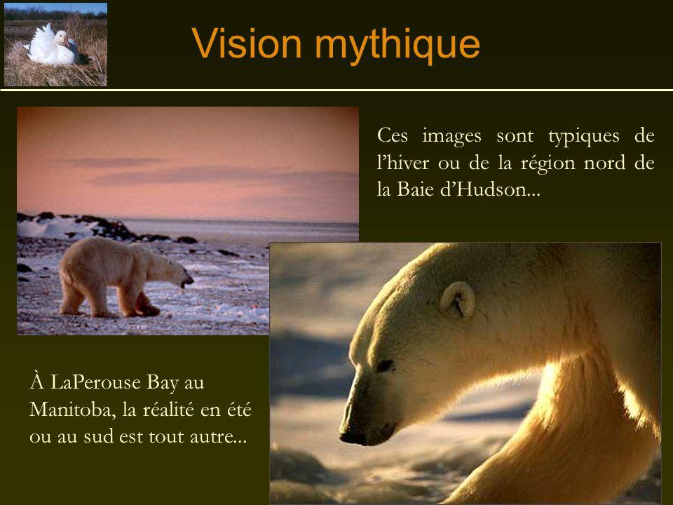 Sa géographie •Au Canada, au nord des Grands Lacs Laurentiens, entre l'Ontario, le Manitoba et les Terrritoires du Nord-Ouest à l'ouest, et le Québec