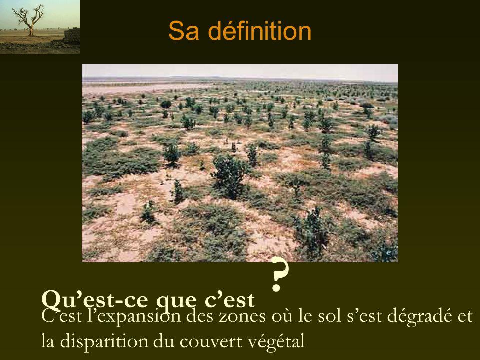 Les ravages de la désertification La désertification touche 1/6 e de la population mondiale La désertification touche 110 pays dont le Canada En Afriq
