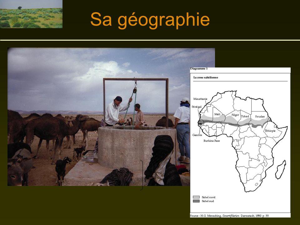 L'Afrique Sahélienne Un exemple de désertification causé par le climat et par les actions de l'homme.