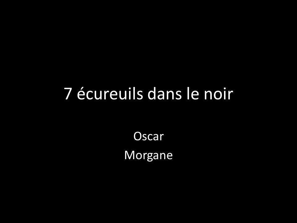 7 écureuils dans le noir Oscar Morgane