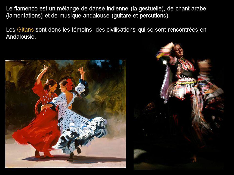 Le flamenco est un mélange de danse indienne (la gestuelle), de chant arabe (lamentations) et de musique andalouse (guitare et percutions).